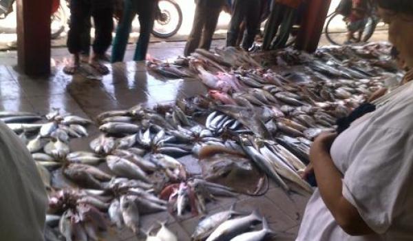 Dermaga TPI (Tempat Pelelangan Ikan)
